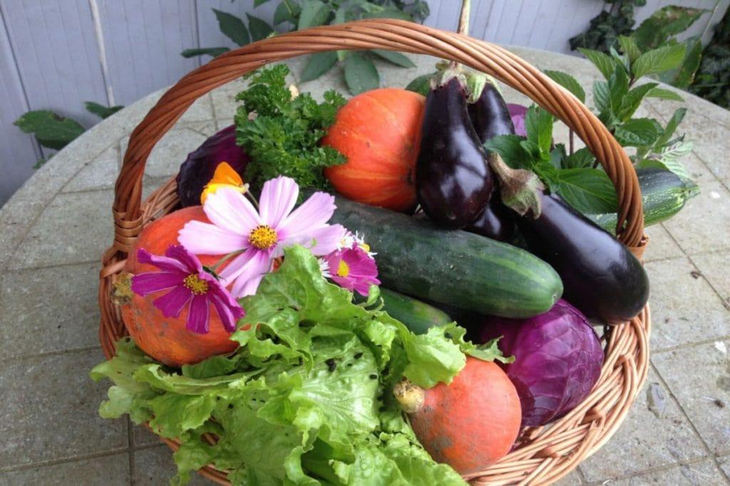 En have skal have frugt og grønt